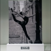 Wolford One-Word Sell Emotion 1