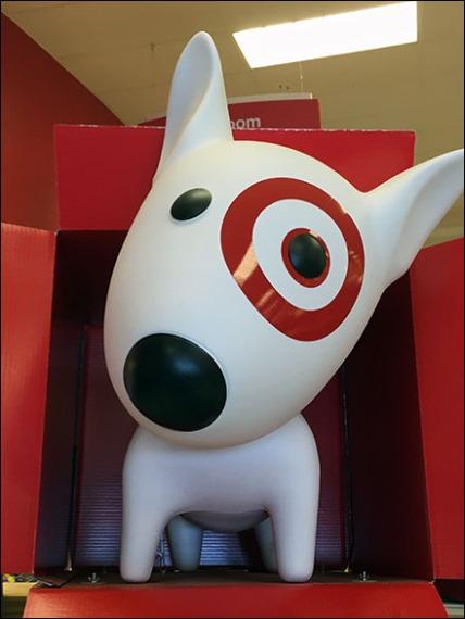 Target Bullseye Dog In A Box 3