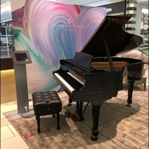 Selling Steinway Pianos At The Mall 2