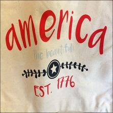 America The Beautiful Est 1776 Feature