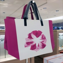 Calvin Klein Euphoria Branded Tote Promotion Feature