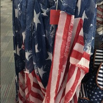 Mossimo Merchandies Patriotic Grid 2
