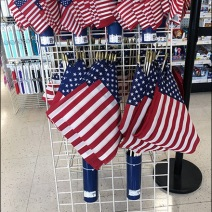 Patriotic Flags Quiver Hung on Grid 2