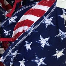 Patriotic Swimwear Merchandising Array Square 3