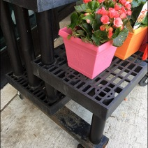 Dual Level Floral Dunnage Rack At Weis 2