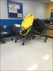 Kayak Shopping Cart 1