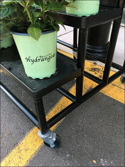Weis Hydrangeas Floral Display Rack 2