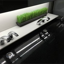 Mercedes Benz Manhattan Restroom Grass Landscaping 3