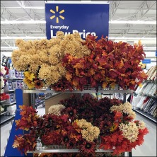 fall-floral-display-declined-feature