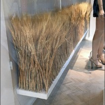 fall-sheeves-of-wheat-visual-merchandising-5