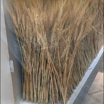 fall-sheeves-of-wheat-visual-merchandising-6