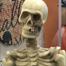 halloween-skeleton-shelf-sitting-3