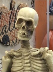 halloween-skeleton-shelf-sitting-3