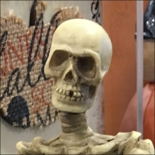 halloween-skeleton-shelf-sitting-closeup-feature