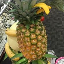 littman-jewelers-vip-pineapple-tree-feature