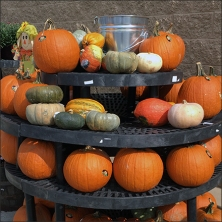 pumpkin-do-it-yourself-dunnage-lazy-suzan-feature